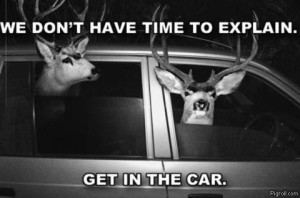 We don't have time to explain..... Get in the car!
